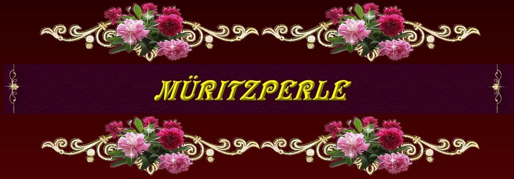 Banner_Ronyas>_mueritzperle_Forum